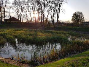 zdjęcie przedstawia zbiornik wodny
